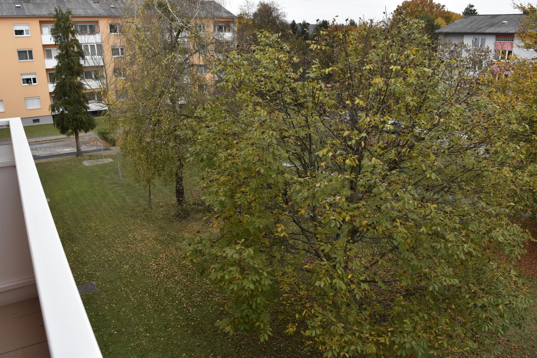 Eigentumswohnung Angerstraße (23)
